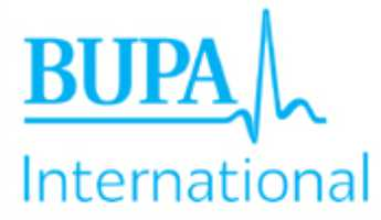 Bupa-International logo